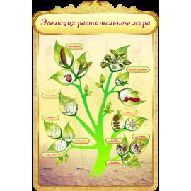 Стенд Эволюция растительного мира для кабинета Биологии в золотистых тонах