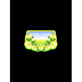 Стенд в стиле группы  Ромашка с горизонтальным карманом А6